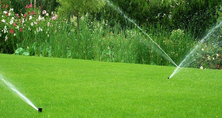 çim ekim çim tohum yeşil alan çalışması reel sulama ankara türkiye